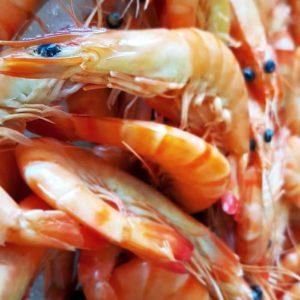 Crevettes Bio de Madagascar L'éTRILLE poissonnerie en ligne